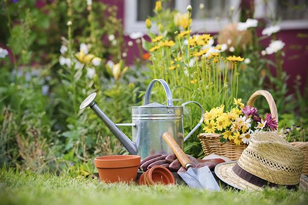 Rodzinny ogród działkowy falkowa nowy sącz